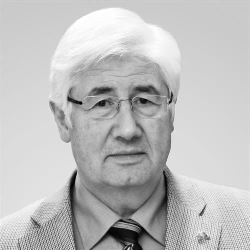 Stein Evju